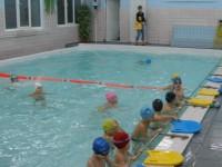 спорт сервис бассейн