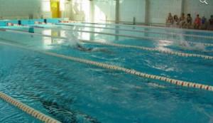 Справка в бассейн купить в Котельниках ясенево